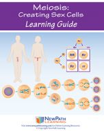 Meiosis: Creating Sex Cells Student Learning Guide - Grades 6 - 10 - Downloadable eBook