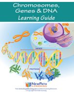 Chromosomes, Genes & DNA Student Learning Guide - Grades 6 - 10 - Downloadable eBook
