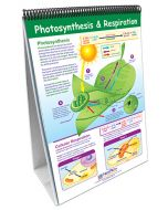 Life Science Curriculum Mastery® Flip Chart Set