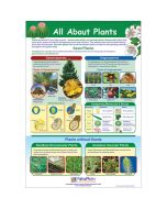 All About Plants Poster, Laminated
