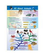 All About Animals Poster, Laminated