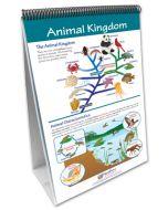 The Six Kingdoms Curriculum Mastery® Flip Chart Set