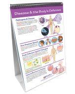 Human Body III: Maintaining Life Curriculum Mastery® Flip Chart Set