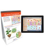 Osmosis and Diffusion Curriculum Mastery® Flip Chart Set With MULTIMEDIA Lesson