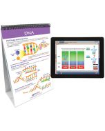 Chromosomes, Genes & DNA Curriculum Mastery® Flip Chart Set With MULTIMEDIA Lesson