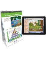 Food Chains and Food Webs Curriculum Mastery® Flip Chart Set With MULTIMEDIA Lesson
