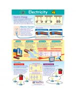Electricity Poster, Laminated