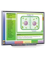 Mitosis: Cell Growth & Division Multimedia Lesson - Downloadable Version