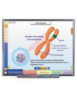 Chromosomes, Genes & DNA Multimedia Lesson - CD Version
