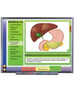 Systems of the Human Body II: Providing Fuel & Protection Multimedia Lesson - CD Version