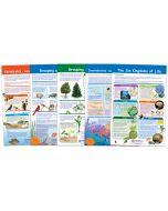 The Six-Kingdoms of Life Bulletin Board Chart Set of 5, Gr. 3-5