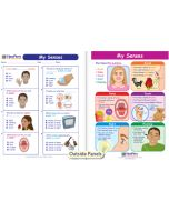 My Senses Visual Learning Guide