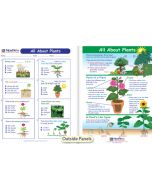 All About Plants Visual Learning Guide