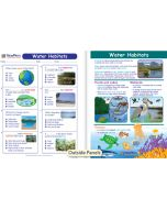 Water Habitats Visual Learning Guide