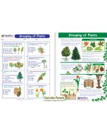 Grouping of Plants Visual Learning Guide