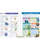 The 6 Kingdoms of Life Visual Learning Guide