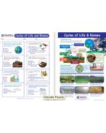 Cycles of Life & Biomes Visual Learning Guide