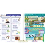 Genetics - The Study of Heredity Visual Learning Guide