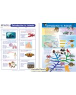 Introduction to Animals Visual Learning Guide