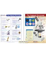 The Compound Microscope Visual Learning Guide