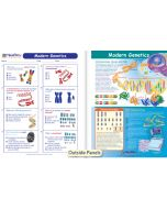 Modern Genetics Visual Learning Guide