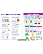 Chemical Reactions Visual Learning Guide