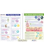 The Immune System Visual Learning Guide