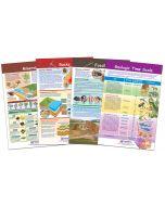 Rocks, Minerals and Fossils Bulletin Board Chart Set of 4