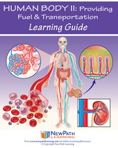 Human Body 2: Providing Fuel & Transportation Student Learning Guide - Grades 6 - 10 - Print Version - Set of 10