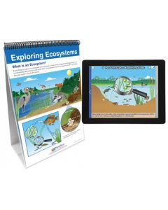What are Ecosystems? Flip Chart Set  With MULTIMEDIA Lesson