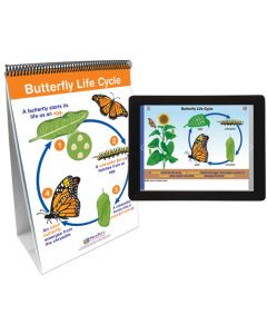 Life Cycles Flip Chart Set With MULTIMEDIA Lesson