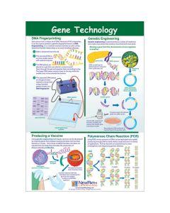 Gene Technology Poster, Laminated