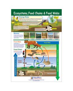 Ecosystems, Food Chains & Food Webs Poster, Laminated
