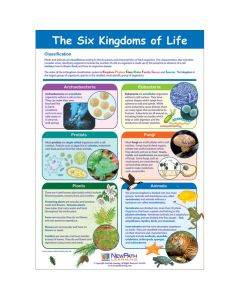 The Six Kingdoms of Life Poster, Laminated
