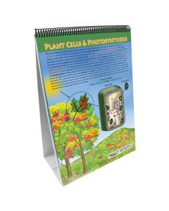 All About Plants Flip Chart Set