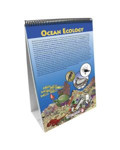 Earth's Oceans Flip Chart Set