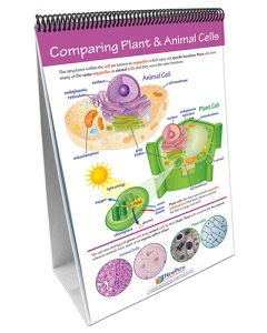 All About Cells Curriculum Mastery® Flip Chart Set