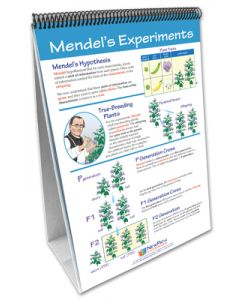Genetics - The Study of Heredity Curriculum Mastery® Flip Chart Set