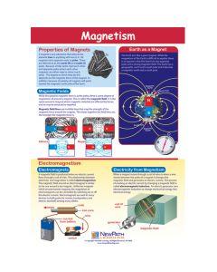 Magnetism Poster, Laminated