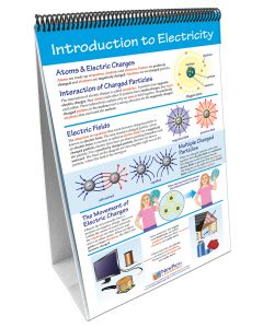 Electricity and Magnetism Curriculum Mastery® Flip Chart Set
