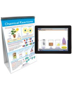 Chemical Reactions Curriculum Mastery® Flip Chart Set With MULTIMEDIA Lesson