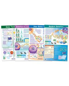"""Genetics and Heredity Poster Set of 4 - Laminated - 23"""" x  35"""""""