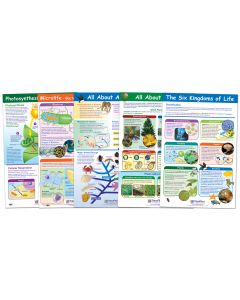 """Life On Earth Poster Set of 6 - Laminated - 23"""" x  35"""""""