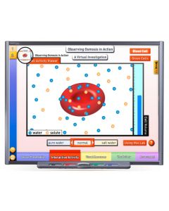 Osmosis & Diffusion - Cell Transport Multimedia Lesson - Downloadable Version