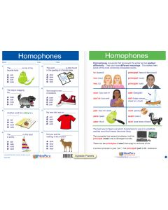 "Homophones - Laminated, ""Write-On/Wipe-Off"" Visual Learning Guide Gr. 3"