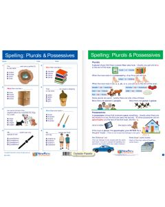 """Spelling: Plurals and Possessives - Laminated, """"Write-On/Wipe-Off"""" Visual Learning Guide Gr. 4"""