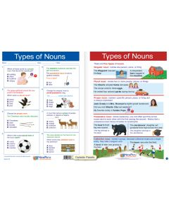"Types of Nouns  - Laminated, ""Write-On/Wipe-Off"" Visual Learning Guide Gr. 7"