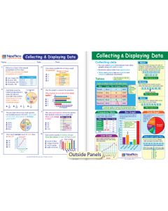 Collecting & Displaying Data Visual Learning Guide