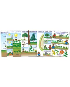 All About Plants Bulletin Board Chart Set of 8 - Early Childhood Spanish Edition
