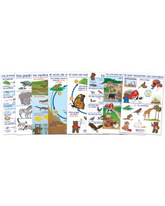 All About Animals Bulletin Board Chart Set of 8 - Early Childhood Spanish Edition